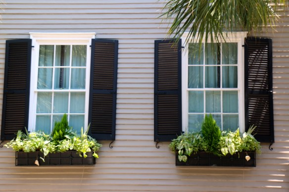TPB Window Boxes in Charleston