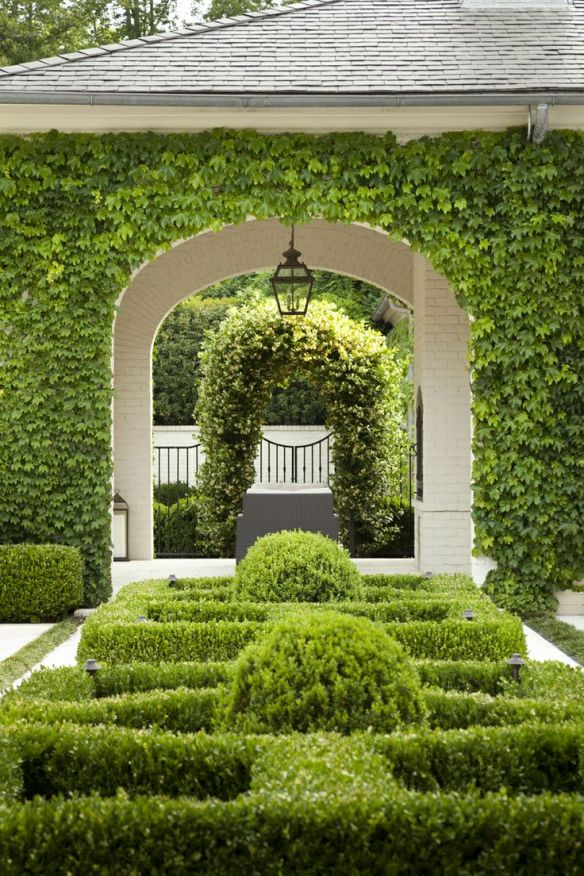 Boxwood perfection by Howard Design Studio