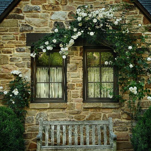 Hulsey Garden 8