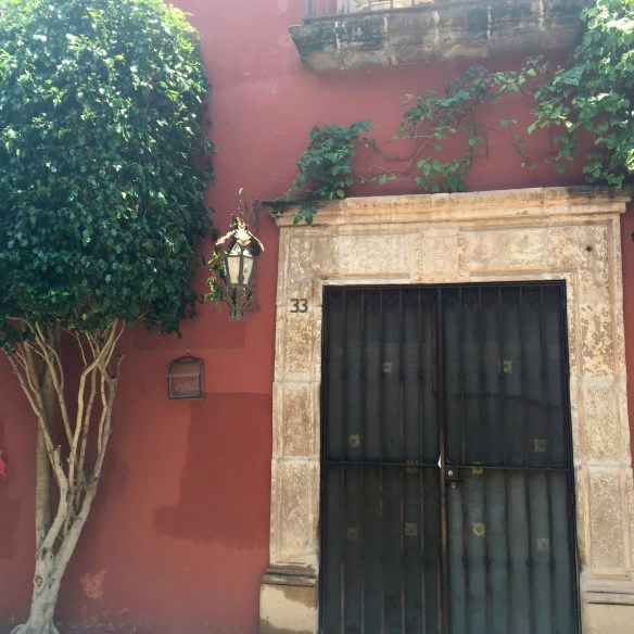 Doors of San Miguel by The Potted Boxwood 14