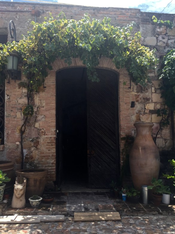 Doors of San Miguel by The Potted Boxwood 19