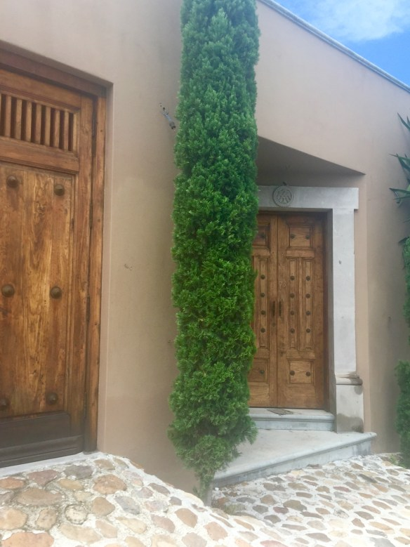 Doors of San Miguel by The Potted Boxwood 40