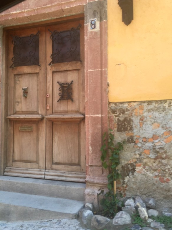 Doors of San Miguel by The Potted Boxwood 44