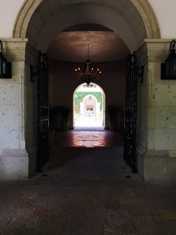 San Miguel de Allende The Potted Boxwood 10