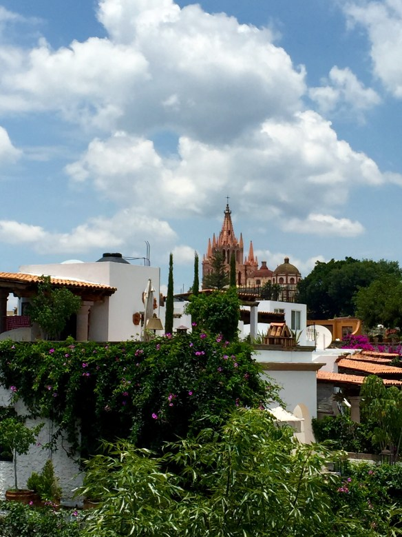 San Miguel de Allende The Potted Boxwood 17