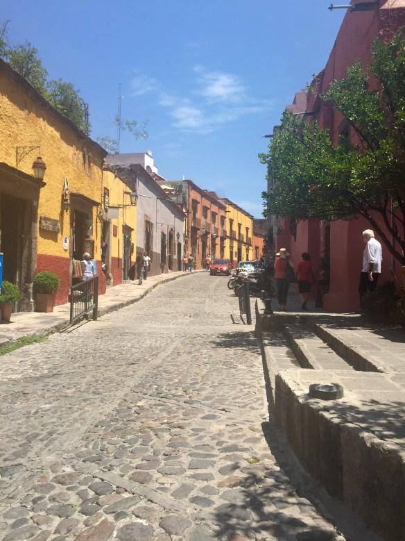 San Miguel de Allende The Potted Boxwood 2