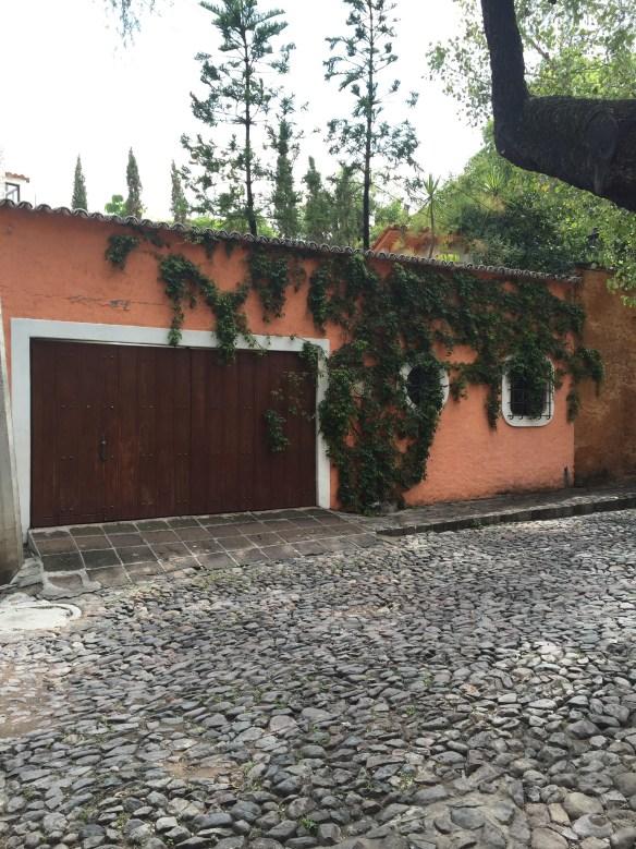 San Miguel de Allende The Potted Boxwood 47