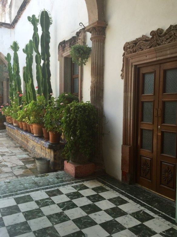 San Miguel de Allende The Potted Boxwood 66