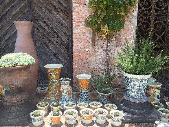 San Miguel de Allende The Potted Boxwood 89