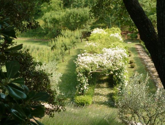 Michel Semini Garden