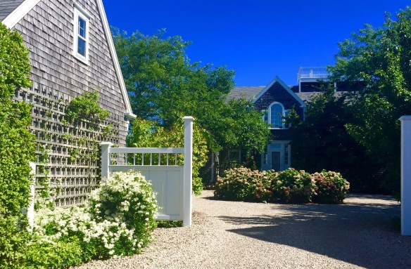 Nantucket Architecture _The Potted Boxwood 54