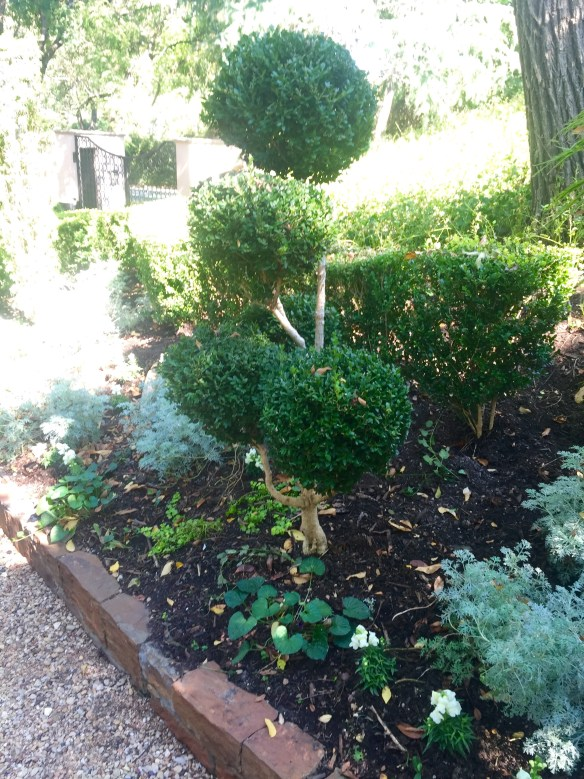 Garden by Robert Bellamy via The Potted Boxwood 27