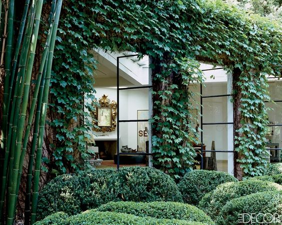 Ivy covered modern home via Elle Decor