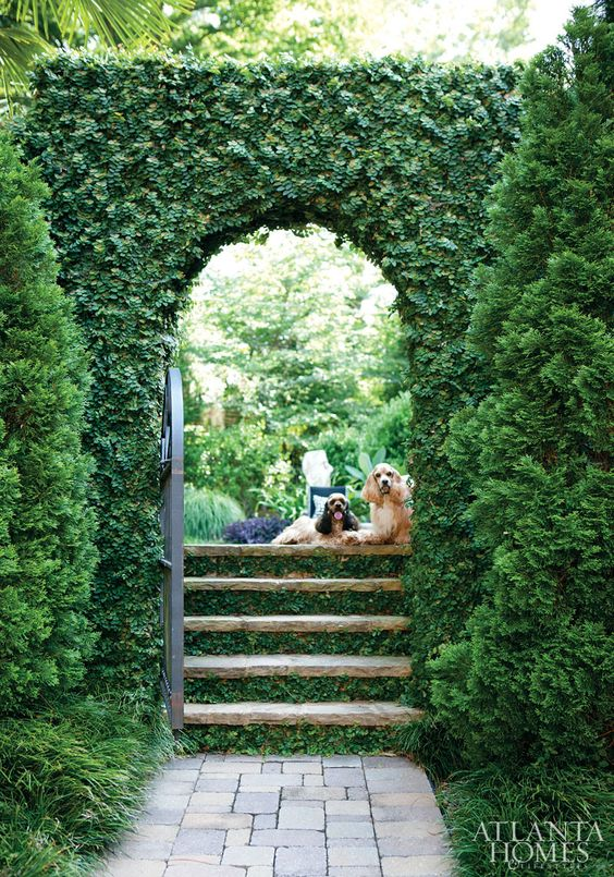 Ivy garden pathway via Atlanta Homes and Lifestyles
