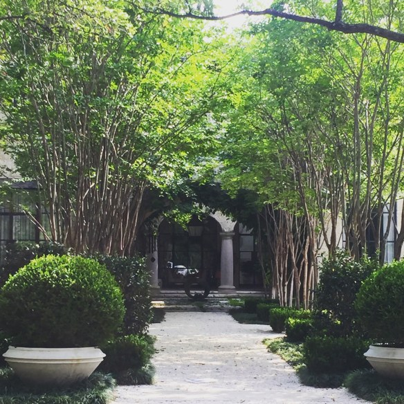 Homes in Dallas photo by The Potted Boxwood 5