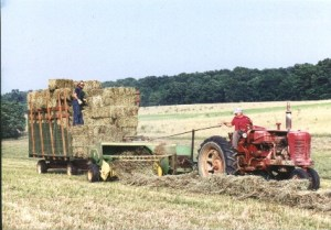 This isn't me. But that's what I did. Great big stacks of bales on the trailer and later up in the hay loft of the barn.