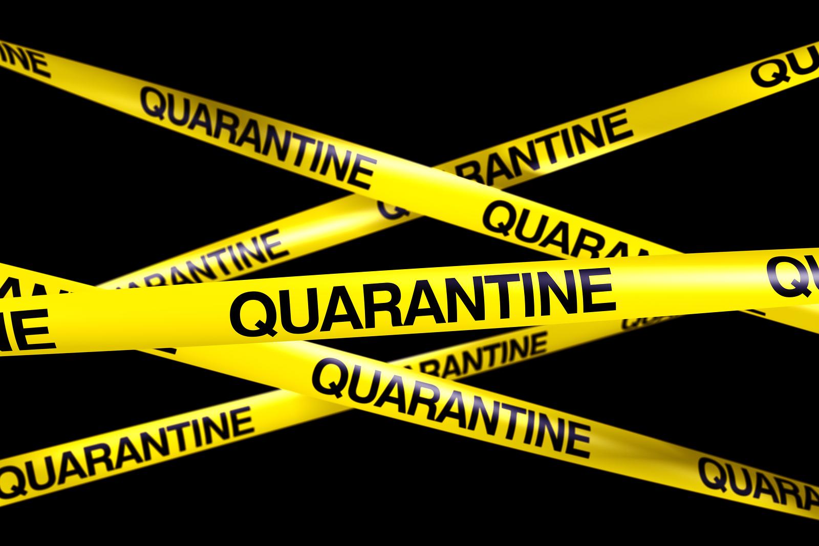 Preparing for Quarantine - The Prepared Page