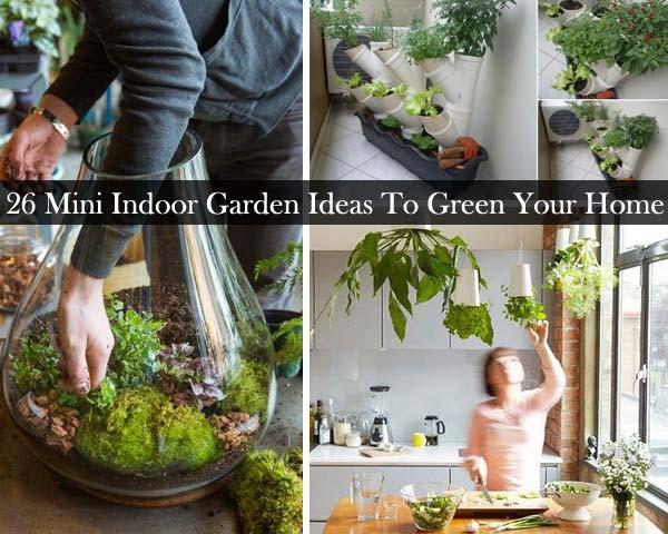 26 Mini Indoor Garden Ideas
