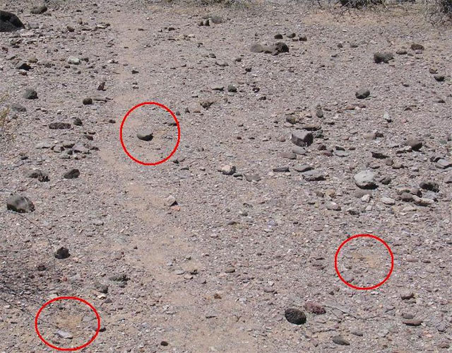 This photo shows two scuff locations and a displaced rock.  The group that left these sign moved on the trail at night.  Apart from the obvious tracks, what else does the photo tell you?