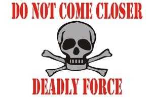 DeadlyForce
