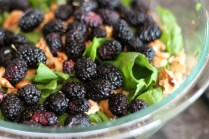 Mulberry Spinach Salad w Raspberry Vinegrette - www.ThePrimalDesire.com