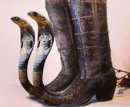 Mexican Pointy Boots Archives Thepubliceditorcom