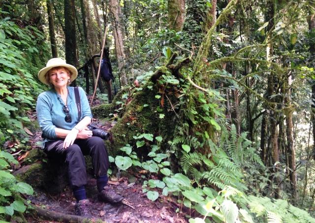 In the heart of Nyungwe Montane Rainforest Rwanda - zoedawes