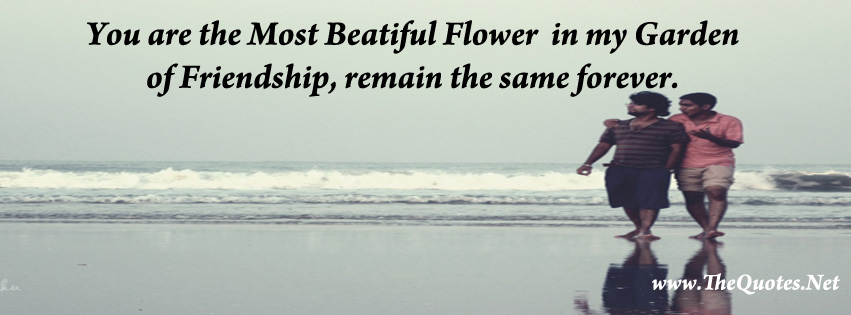 Best Meaningful Quotes Wallpapers Facebook Cover Image Friendship Quotes Thequotes Net