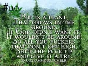 Girl Smoking A Blunt Wallpaper Interesting Funny Marijuana Quotes