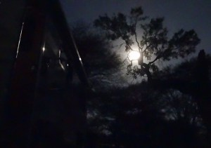 Full moon at Lethaba camp
