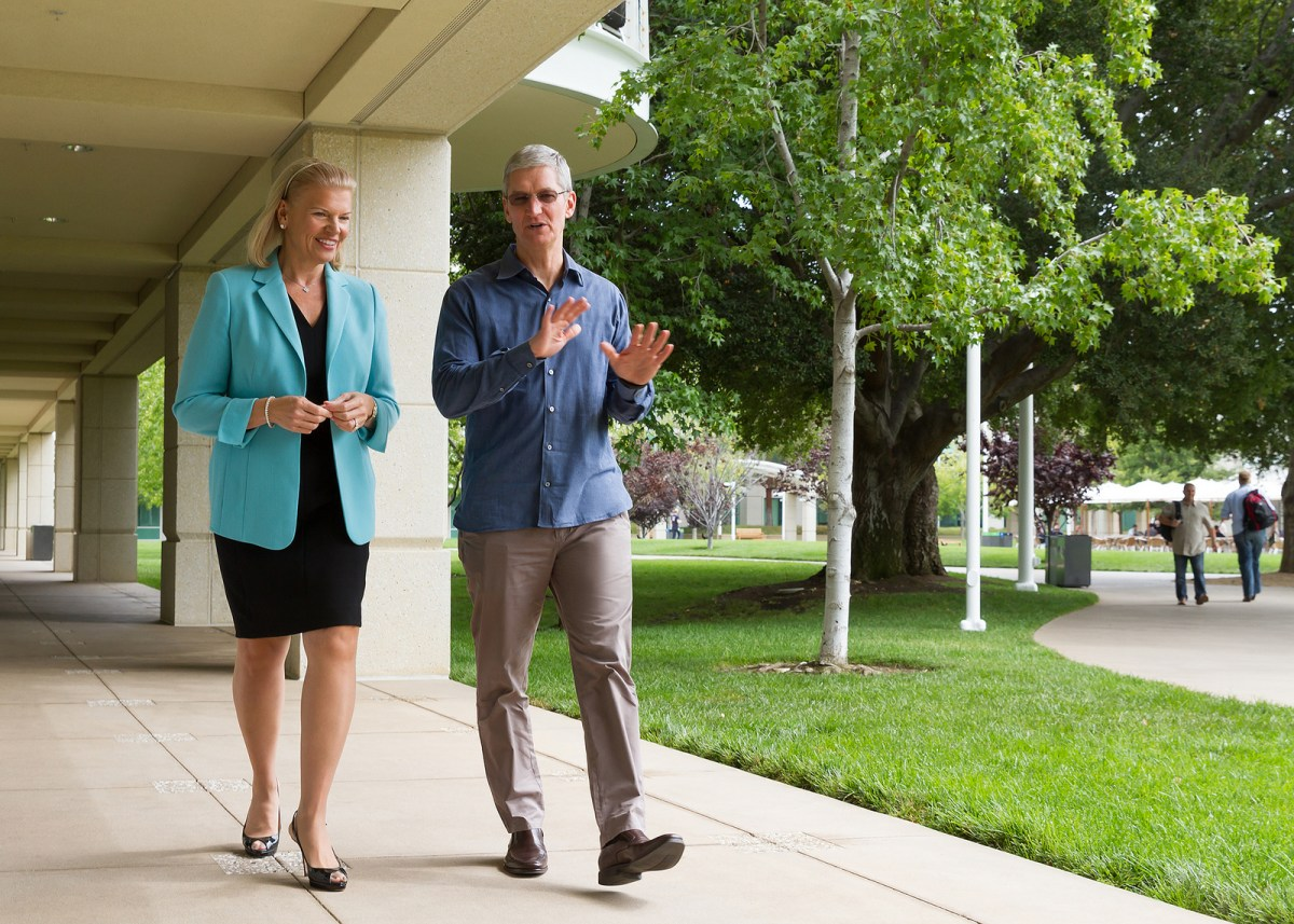 Tim Cook and Virgina Rometty