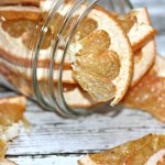 Dehydrated Super-Charged Grapefruit Slices