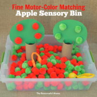 Fine Motor Color Matching Apple Sensory Bin