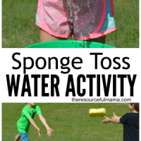 Sponge Toss Water Activity