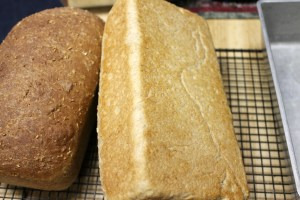 Perfect! The bottom of the loaf should be lightly browned and hollow sounding when tapped