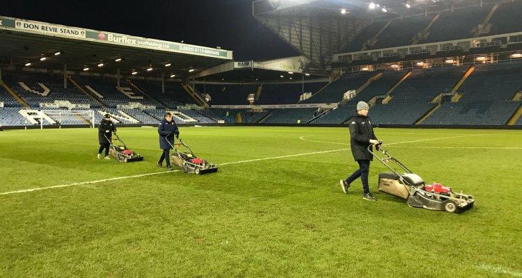 Leeds United grass