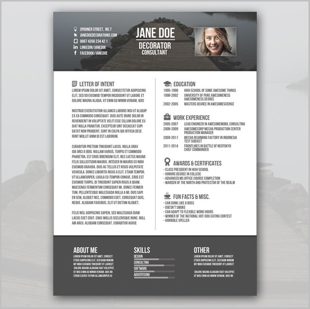 Best Resume Templates Word Free Download Templates-1  Resume Examples