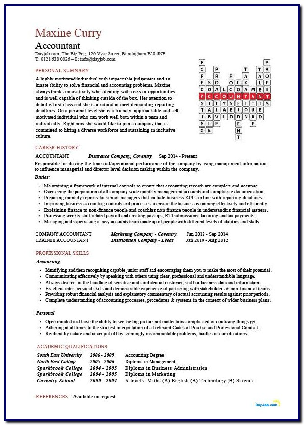 Professional Cv Template Accountant Templates-1  Resume Examples
