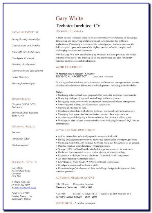 Professional Cv Template Architect Templates-1  Resume Examples