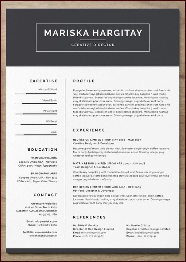 Free Resume Template With Photo Insert Templates-1  Resume Examples