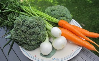 Our first heads of broccoli, first carrots, and some nice sized onions.