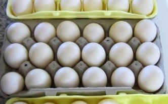 Too Many Duck Eggs! - The Self Sufficient HomeAcre