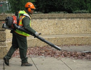 I remember using a rake