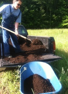 Before planting anything, compost