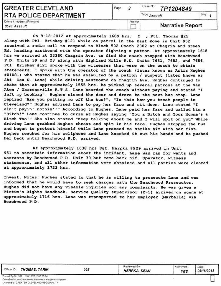 write police incident report - Onwebioinnovate - mock police report