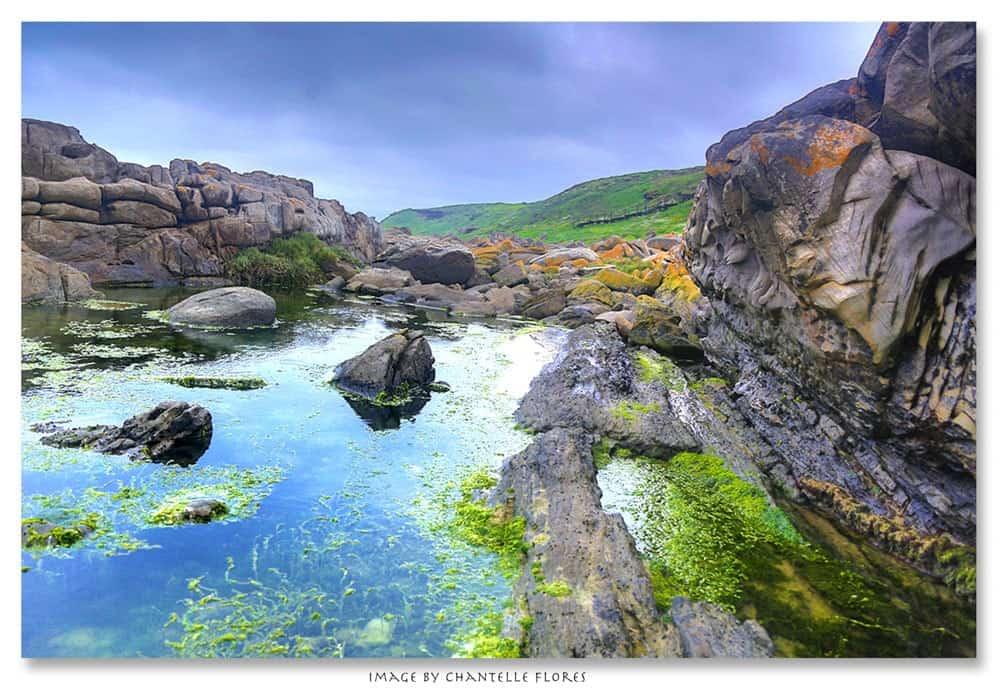 Schoenmakerskop-Sardinia Bay Nature Reserve