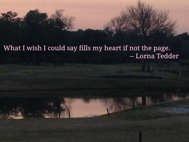 What I Wish I Could Say