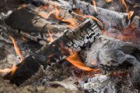 Is Wood Ash Good for Garden Soil?