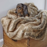 Pet Blankets For Sofa Pet Blankets For Sofa Home And ...
