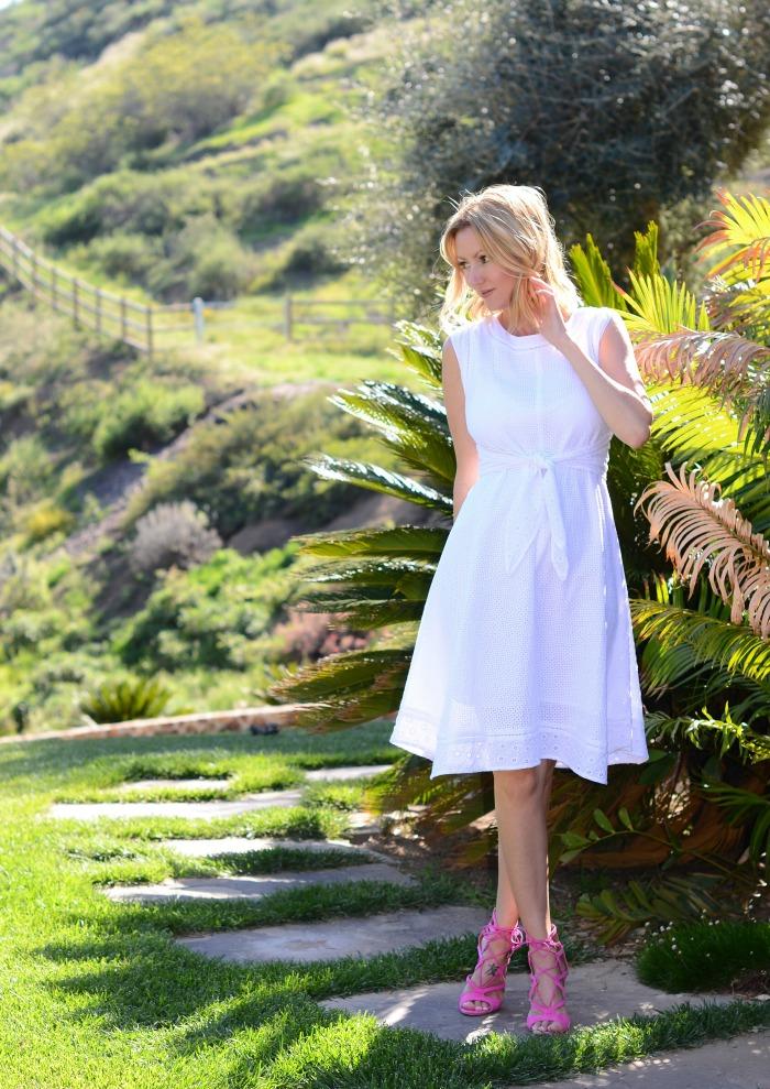 CAbi Lizzie Dress